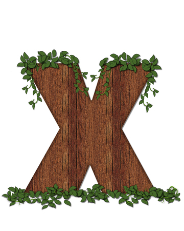 The letter X, in the alphabet set Deep Woods is filled with wod texture and has vines growing all over it. It coordinates with the alphabet set Deep Woods Owl.