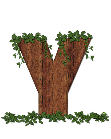 coordinates: The letter Y, in the alphabet set Deep Woods is filled with wod texture and has vines growing all over it. It coordinates with the alphabet set Deep Woods Owl. Stock Photo