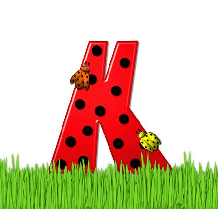 lady bug: The red letter K, in the alphabet set Lady Bug Red, has large black polka dots and is decorated with 3D ladybugs.  Letter is nestled in tall, garden grass.
