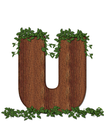 The letter U, in the alphabet set Deep Woods is filled with wod texture and has vines growing all over it. It coordinates with the alphabet set Deep Woods Owl.