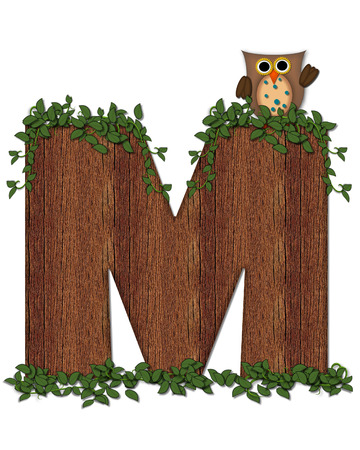 The letter M, in the alphabet set Deep Woods Owl is filled with wod texture and has vines growing all over it.  Owl sits on log-style letter.