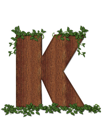 The letter K, in the alphabet set Deep Woods is filled with wod texture and has vines growing all over it. It coordinates with the alphabet set Deep Woods Owl.