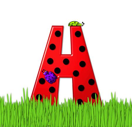 """mariquitas: El rojo de la letra H, en el conjunto de alfabeto de """"Lady Bug Red,"""" tiene grandes lunares negro y está decorado con mariquitas en 3D. Carta se encuentra en alto, hierba jardín."""