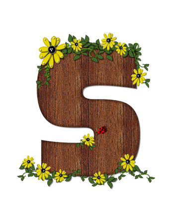 The letter S, in the alphabet set Ladybug and Sunflower is filled with wood texture.  Ladybug, sunflowers and vines decorate letter. Stock Photo
