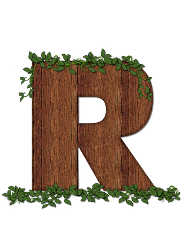 The letter R, in the alphabet set Deep Woods is filled with wod texture and has vines growing all over it. It coordinates with the alphabet set Deep Woods Owl.