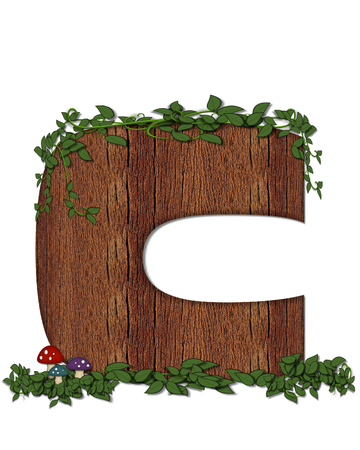 The letter C, in the alphabet set Log is filled with wod texture.  Vines and colorful mushrooms grow around letter.  Some letters have knot holes with peeking eyes. Stock Photo