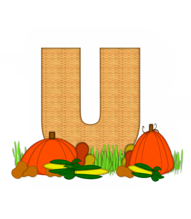 bounty: The letter U, in the alphabet set Blessed Bounty, is filled with wicker texture.  Letter sits in grassy field surrounded by Fall vegetables.