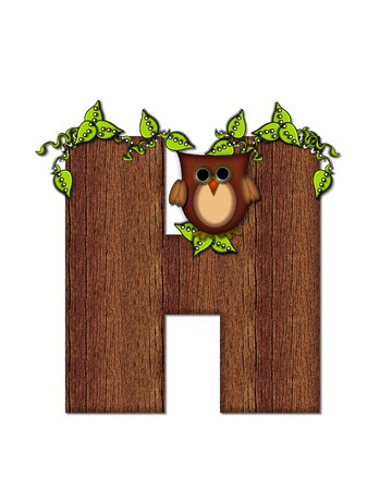 The letter H, in the alphabet set Woodsy Owl is filled with wood texture.  3D vines hang on letter.  Letter is decorated with a brown owl. Imagens