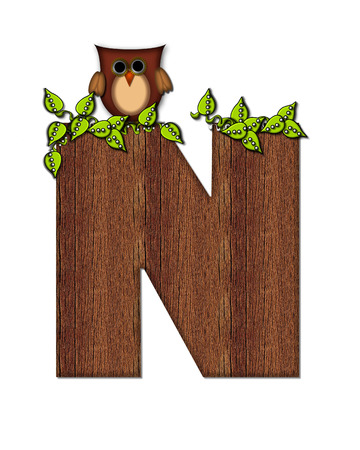 The letter N, in the alphabet set Woodsy Owl is filled with wood texture.  3D vines hang on letter.  Letter is decorated with a brown owl.