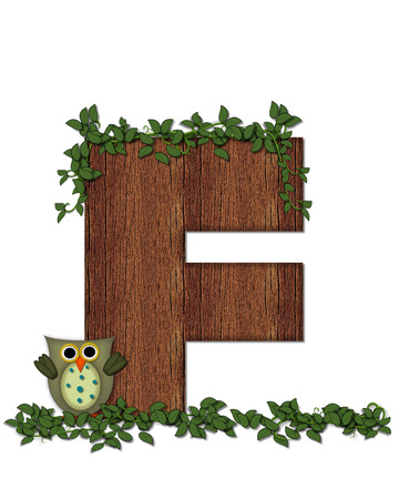 The letter F, in the alphabet set Deep Woods Owl is filled with wod texture and has vines growing all over it.  Owl sits on log-style letter. Stock Photo