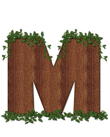 The letter M, in the alphabet set Deep Woods is filled with wod texture and has vines growing all over it. It coordinates with the alphabet set Deep Woods Owl.