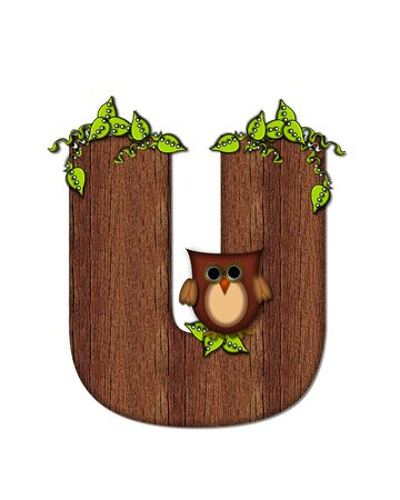 The letter U, in the alphabet set Woodsy Owl is filled with wood texture.  3D vines hang on letter.  Letter is decorated with a brown owl. Imagens