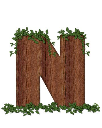 The letter N, in the alphabet set Deep Woods is filled with wod texture and has vines growing all over it. It coordinates with the alphabet set Deep Woods Owl.