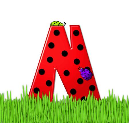 """mariquitas: El rojo de la letra N, en el conjunto de alfabeto de """"Lady Bug Red,"""" tiene grandes lunares negro y está decorado con mariquitas en 3D. Carta se encuentra en alto, hierba jardín. Foto de archivo"""