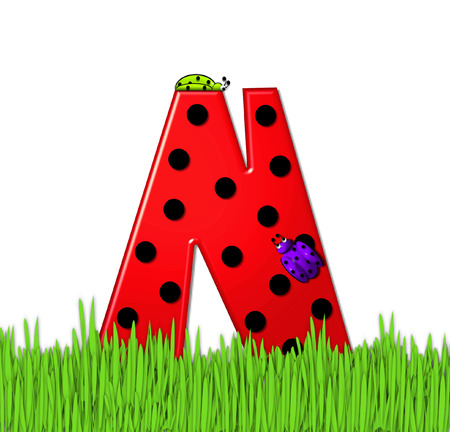 tall grass: The red letter N, in the alphabet set Lady Bug Red, has large black polka dots and is decorated with 3D ladybugs.  Letter is nestled in tall, garden grass. Stock Photo
