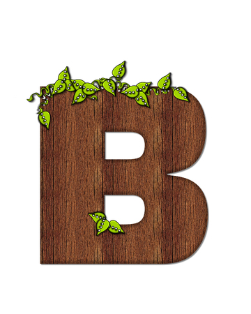 wood grain: The letter B, in the alphabet set Woodsy, is filled with wood grain and resembles a tree. Three dimensional vnes are spread across top of letter.