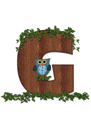 The letter G, in the alphabet set Deep Woods Owl is filled with wod texture and has vines growing all over it.  Owl sits on log-style letter.