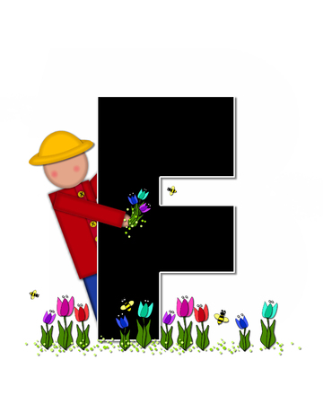 wears: The letter F, in the alphabet set Children Spring Tulips is black and trimmed with white.  Child holds bouquet of tulips and wears a straw hat.  Tulip garden grows at her feet. Stock Photo