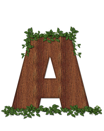 coordinates: The letter A, in the alphabet set Deep Woods is filled with wod texture and has vines growing all over it. It coordinates with the alphabet set Deep Woods Owl. Stock Photo