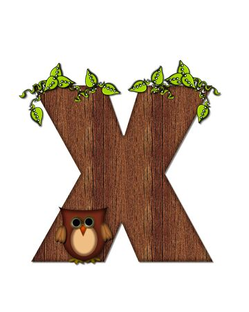 The letter X, in the alphabet set Woodsy Owl is filled with wood texture.  3D vines hang on letter.  Letter is decorated with a brown owl.