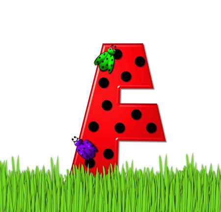 """mariquitas: El rojo de la letra F, en el conjunto de alfabeto de """"Lady Bug Red,"""" tiene grandes lunares negro y está decorado con mariquitas en 3D. Carta se encuentra en alto, hierba jardín."""