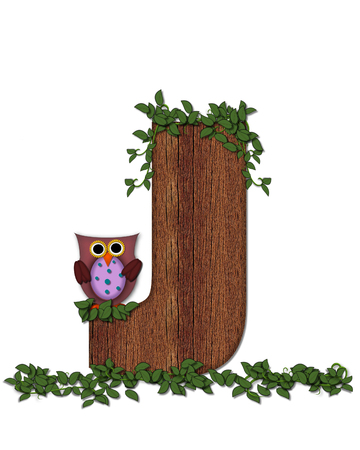 The letter J, in the alphabet set Deep Woods Owl is filled with wod texture and has vines growing all over it.  Owl sits on log-style letter. Stock Photo