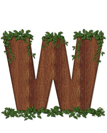 The letter W, in the alphabet set Deep Woods is filled with wod texture and has vines growing all over it. It coordinates with the alphabet set Deep Woods Owl.