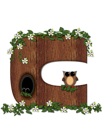 The letter C, in the alphabet set Log Home is filled with wod texture.  Flower bloom on vines hanging on letter.  One owl hides in knothole and the other outside the stump home.