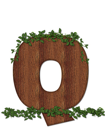 The letter Q, in the alphabet set Deep Woods is filled with wod texture and has vines growing all over it. It coordinates with the alphabet set Deep Woods Owl. Stock Photo