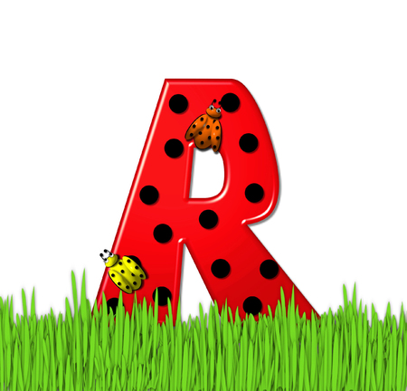 lady bug: The red letter R, in the alphabet set Lady Bug Red, has large black polka dots and is decorated with 3D ladybugs.  Letter is nestled in tall, garden grass.