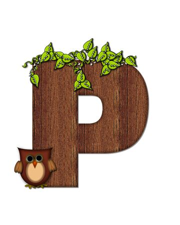 The letter P, in the alphabet set Woodsy Owl is filled with wood texture.  3D vines hang on letter.  Letter is decorated with a brown owl. Stock Photo