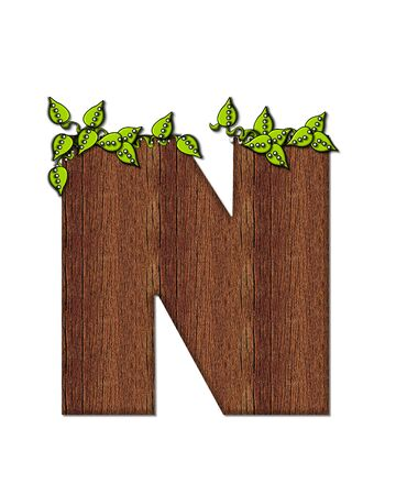 wood grain: The letter N, in the alphabet set Woodsy, is filled with wood grain and resembles a tree. Three dimensional vnes are spread across top of letter. Stock Photo