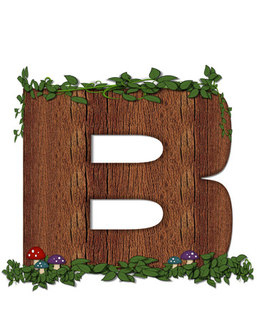 The letter B, in the alphabet set Log is filled with wod texture.  Vines and colorful mushrooms grow around letter.  Some letters have knot holes with peeking eyes.