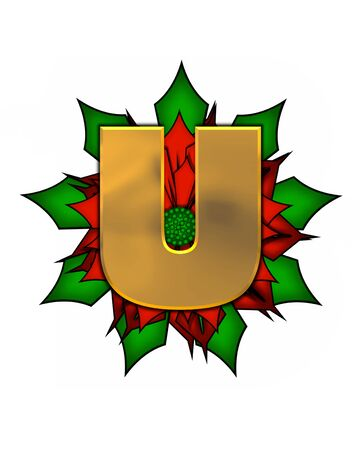 metalic: The letter U, in the alphabet set Christmas Poinsettia is shiny gold metallic.  Letter sits on a large red, poinsettia. Stock Photo