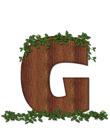 alphabet tree: The letter G, in the alphabet set Deep Woods is filled with wod texture and has vines growing all over it. It coordinates with the alphabet set Deep Woods Owl. Stock Photo