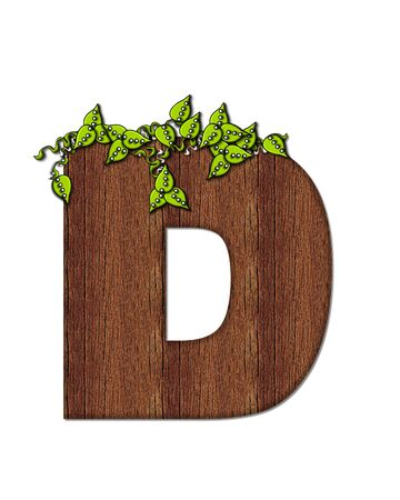 The letter D, in the alphabet set Woodsy, is filled with wood grain and resembles a tree. Three dimensional vnes are spread across top of letter.
