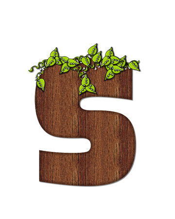 wood grain: The letter S, in the alphabet set Woodsy, is filled with wood grain and resembles a tree. Three dimensional vnes are spread across top of letter.