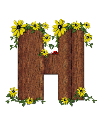 jungle vines: The letter H, in the alphabet set Ladybug and Sunflower is filled with wood texture.  Ladybug, sunflowers and vines decorate letter. Stock Photo
