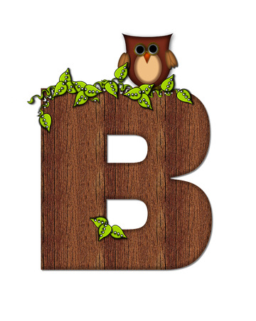 The letter B, in the alphabet set Woodsy Owl is filled with wood texture.  3D vines hang on letter.  Letter is decorated with a brown owl.
