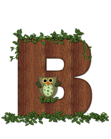 The letter B, in the alphabet set Deep Woods Owl is filled with wod texture and has vines growing all over it.  Owl sits on log-style letter.