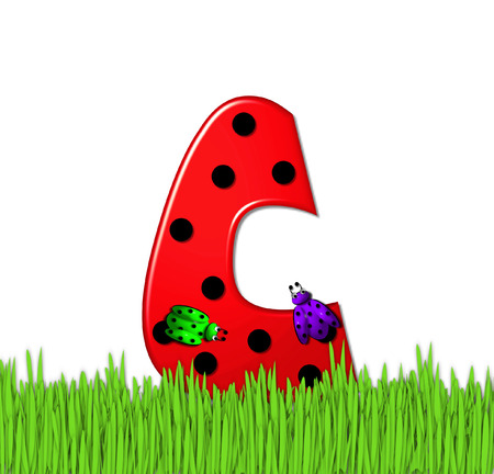 lady in red: The red letter C, in the alphabet set Lady Bug Red, has large black polka dots and is decorated with 3D ladybugs.  Letter is nestled in tall, garden grass. Stock Photo