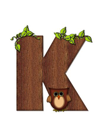 The letter K, in the alphabet set Woodsy Owl is filled with wood texture.  3D vines hang on letter.  Letter is decorated with a brown owl.