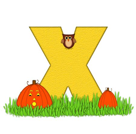 pumpkin patch: The letter X, in the alphabet set Pumpkin Patch  is  a yellow and and sits in the green grass of a pumpkin patch.  Two orange pumpkins and an owl decorate letter.