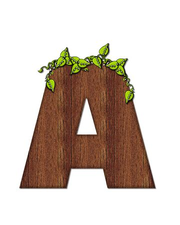 wood grain: The letter A, in the alphabet set Woodsy, is filled with wood grain and resembles a tree. Three dimensional vnes are spread across top of letter.