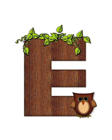 The letter E, in the alphabet set Woodsy Owl is filled with wood texture.  3D vines hang on letter.  Letter is decorated with a brown owl.