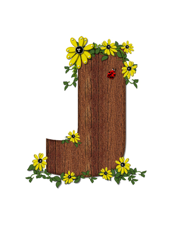 The letter J, in the alphabet set Ladybug and Sunflower is filled with wood texture.  Ladybug, sunflowers and vines decorate letter. Stock Photo