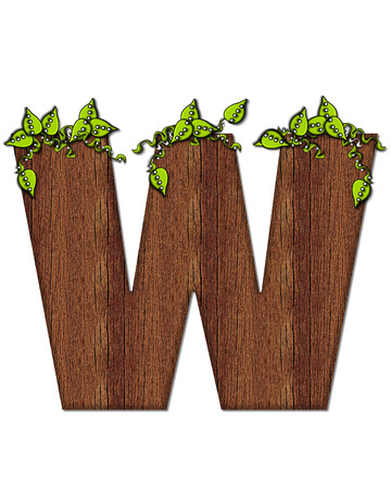 wood grain: The letter W, in the alphabet set Woodsy, is filled with wood grain and resembles a tree. Three dimensional vnes are spread across top of letter.