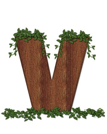 The letter V, in the alphabet set Deep Woods is filled with wod texture and has vines growing all over it. It coordinates with the alphabet set Deep Woods Owl.