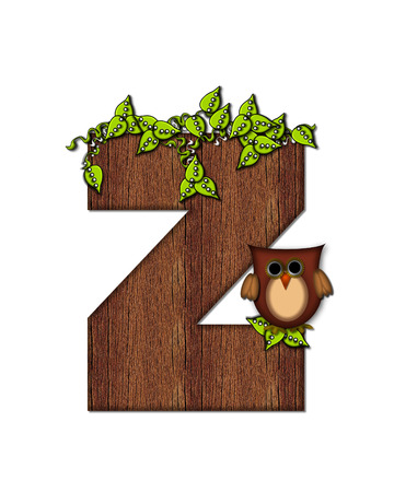 The letter Z, in the alphabet set Woodsy Owl is filled with wood texture.  3D vines hang on letter.  Letter is decorated with a brown owl. Imagens