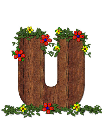 jungle vines: The letter U, in the alphabet set Woodsy Owl is filled with wood texture.  3D flowers hand on vines surrounding letter.